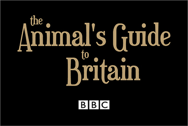 the animal's guide to britain